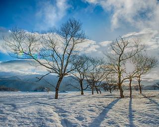 Lake Hibara morning scenery