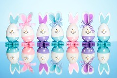 Bunny Line (Karen_Chappell) Tags: bunny bunnies rabbit rabbits decor decoration holiday blue purple pink white cute easter product happyeaster seven 7 reflection egg eastereggs eggs colourful pastel multicoloured colours colour color