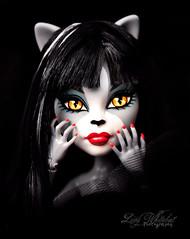 Purrsephone (Lucy Whitebat) Tags: monsterhigh doll dolls osalina mattel photo photos mh 2018 monsterhigh2018 photoshoot purrsephone purrsephoneandmeowlody werecat cat twins ghoulspirit