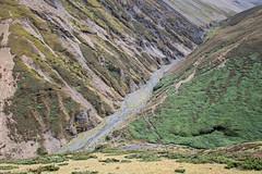 Beautiful valley between Nyile La pass and Lingshi - Thimphu District - Snowman Trek - Bhutan (PascalBo) Tags: nikon d500 asie asia southasia asiedusud drukyul drukgyalkhap bhutan bhoutan འབྲུག་ཡུལ། འབྲུག་རྒྱལ་ཁབ་ snowman trek trekking hike hiking lunana thimphu himalaya himalayas jigmedorjinationalpark landscape paysage montagne outdoor outdoors pascalboegli