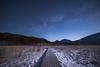 Summer stars rising to minus 20 °C (reonides) Tags: nikond810a nikko senjogahara 戦場ヶ原 星景 longexposure star stars