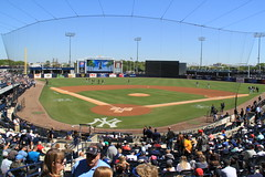 IMG_3254 (Joseph Brent) Tags: yankees spring training tampa florida steinbrenner field aaron judge