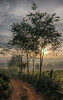 Dawn landscape (adriandc2010) Tags: httpswwwflickrcomphotostagslandscape myanmar burma shanstate
