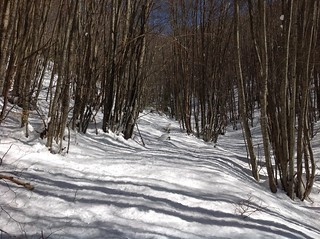 24/3/18 - verso il Monte Pedicinetto...