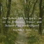 Das Leben ist zu kurz - Zitat Horst Bulla thumbnail