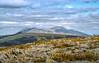 1998 Vishera river-3 (Alexander Kondakov) Tags: 1998 kodak kodakektachromee100vs landscape lens photobyalexanderkondakov russia uralmountains film minolta700si minoltaaf2885mmf3545 minoltaaf75300mmf4556 old