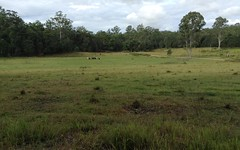 Lot 53 Upper Fine Flower Rd, Upper Fine Flower NSW