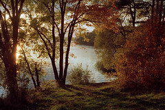 Istra-[AeroColor2444]-01 (stepanov9) Tags: minoltadimagescanelite5400 nikonf80 landscape kodak russia greatphotographers vividstriking analogphoto naturemasterclass aerocolor2444 lakes
