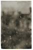 hail storm (Francis Mansell) Tags: hail blur london sepia monochrome nikanalogefexpro2 depthoffield dof bokeh