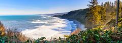 Agate Beach (DF Shryock) Tags: landscape ca patrickspointstatepark ocean panorama waves sea trees beach nature vista agatebeach