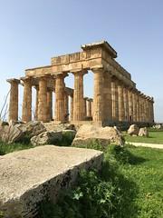 IMG_6001 Selinunte (32) (archaeologist_d) Tags: sicily italy selinunte archaeologicalsite archaeologicalruins templee templeofhera