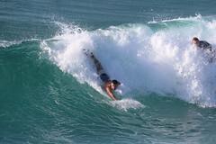 2018.03.18.08.31.49-Charlie-006 (www.davidmolloyphotography.com) Tags: bodysurf bodysurfer bodysurfing surf beach surfing surfer tamarama