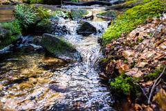 Karlstalschlucht (Dr. Gonzo78) Tags: fluss wald steine rheinlandpfalz karlstalschlucht blätter moos laub natur trippstadt deutschland pfälzerwald landschaft