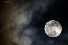 Luna Moon 30 marzo 2018- 3 (N3T0V) Tags: lunallena fullmoon luna moon nubes dark sky night noche cielo chiapas méxico astronomia astronomy astrofoto astrophoto talkingtothemoon chiapasmeteo