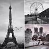 Paris trilogy (JM THE BURT) Tags: seine notredame effeiltower toureiffel paris noiretblanc