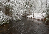 Streaming (Chancy Rendezvous) Tags: chancyrendezvous davelawler blurgasmcom blurgasm stream river flowing water snow snowfall trees forest spencerstateforest woods plants nature wintry weather