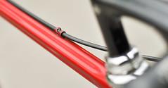 Colnago Esa Mexico (Vintagekola.cz) Tags: columbus campagnolorecord deltabrakes bycicle esamexico itm regal cinelli campagnolo christophe ambrosio
