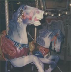 "Raring To Go (dreamscapesxx) Tags: ""snapitseeit"" polavoid ""grandrapidsmi"" ""grandrapidspublicmuseum"" ""1928spillmancarousel"" instant polaroid polaroid600businessedition impossible600colorfilm carousel horses wooden handcarved"