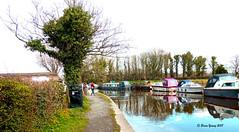 Lancaster Canal at Bilsborrow, near Preston, Lancashire (Fred Fanakapan) Tags: lancaster canal bilsborrow preston reflections