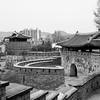 Serpent (regardalex) Tags: corée korea regardalex wall fortress suwon