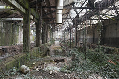 Jungle Factory (Sean M Richardson) Tags: abandoned factory jungle italy italia decay details derelict detail decayed design architecture old classic rust texture naturetakesover vines trees pipes canon eos explore travel urbex exploration color colour colorful green red brown black white leading lines europe ruins ruinas photoshop digital contrast vibrant bright building 24mm prime