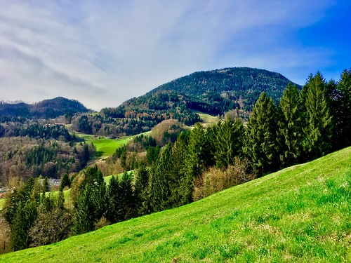 Bavarian landscape with mountains and forest