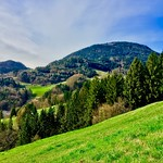 Bavarian landscape with mountains and forest thumbnail