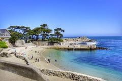 Beautiful day! (b_nak86) Tags: mirrorless water sun ocean pacificgrove monterey california beach a6000 sony