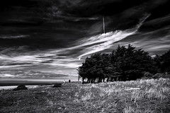 The Trees Will Burn With Blackened Hands (Novowyr) Tags: france dunes dhatainville patrimoinenaturelle naturereserve landscape shore trees windshaped wanderer people sky vast clouds novowyr leicam capdecarteret normandie