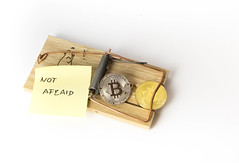 Bitcoin is not a trap (wuestenigel) Tags: trap mousetrap btc crypto cryptocurrency bitcoin coins paper papier currency währung business geschäft wealth reichtum money geld isolated isoliert achievement leistung finance finanzen bait köder cash kasse noperson keineperson desktop investment investition stranded gestrandet savings ersparnisse bank mausefalle falle luck glück gold