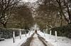 Whatton Snow (Squady) Tags: winterweather squadypix nottingham uk