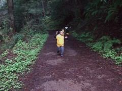0813 Return (mliu92) Tags: purisimacreek redwood preserve halfmoonbay hiking cubscouts