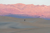 As small as a speck of sand (Dan M. Thompson) Tags: lifestyle perspective color mountains sand dunes mesquite deathvalley sanddune mesquitedunes nationalpark light people photographer travel explore exploration nikkor nikon d800e