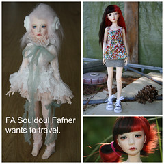 FA souldoul Fafner (spiti84) Tags: fa souldoul fafner wants travel bjd resin msd kid