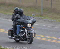 IMG_1259 (fbergess) Tags: bikes birds cars dogs jet otp people planes r44 tumwater washington unitedstates us