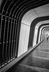 in the tube (Jack_from_Paris) Tags: r0003034bw ricoh gr 28mm apsc capture nx2 lr monochrom noiretblanc street bw wide angle perspective courbes urbain londres london métro couloir uk