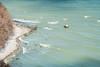 Waves (BlossomField) Tags: chalkrock cliff sea water sassnitz mecklenburgvorpommern deutschland deu