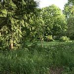 St-Thomas-Friedhof_e-m10_1005259932 thumbnail