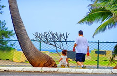 Happy Fence Friday! (peggyhr) Tags: peggyhr fence trees ocean hff dsc08090c hawaii candid sophia jr granddaughter son