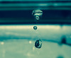 'Piggy in the middle' (samuel.t18) Tags: macro water drop photography samuelt18 nikon falling 60mm d3200 dslr macrounlimited