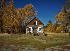 Settler's Cabin (The VIKINGS are Coming!) Tags: autumn colors logcabin settler sierras plumas highway70