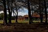 RenatoSoares_Parque Barigui_Curitiba_PR (MTur Destinos) Tags: curitiba pr paraná brasil br parquebarigui queroquero pinhas pinheiros lazer diversão família mturdestinos