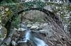 Puente de los Molinos (Piornal, Caceres) (JCMCalle) Tags: bridge puente water landscape puentedey burgos naturaleza nature rio river jcmcalle agua