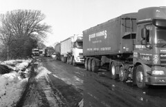 Fine body of men (Fray Bentos) Tags: articulatedlorries hauliers haulagecontractors lorries sugarbeet wissington norfolk eastanglia ilforddelta400 mamiyac220 rodinal adoxaph09