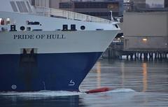 Pride of Hull (Hugo Sluimer) Tags: portofrotterdam port haven rotterdam nederland zuidholland holland onzehaven nlrtm