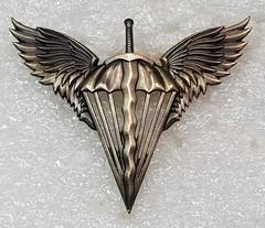 Ukraine Air Assault Forces (Sin_15) Tags: ukrainian ukraine air assault forces beret military emblem badge parachute airmobile airborne army infantry paratrooper insignia