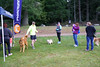 untitled-29.jpg (@Palleus) Tags: dogs nanaimo rdn dog race raceseries racetiming rebeltiming run runners running traildog trailrace trailrun vancouverisland viendurance westwood westwoodlake