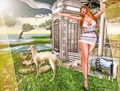 New Post ►517◄ VHW (Fadagitana Blindside (Virtual Hype Woman)) Tags: belleza scandalize shis exxess cosmopolitan fashion blog sl secondlife women woman fashionblog avatar model hair virtualworld blogger 3d photo photography clothes new outfit bento meshbody mesh meshead redheads dress shoes heel sandals pose