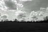 DSC_00181 (grebe.j) Tags: wolken himmel feld felder gras wiese baum bäume landschaft black white blackandwhite