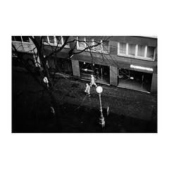 zagreb (s_inagaki) Tags: industar69 monochrome walking ザグレブ bnw street モノクロ oldlens 白黒 bw 散歩 雨 raining vintagelens レインコート blackandwhite スナップ raincoat croatia オールドレンズ クロアチア snap zagreb